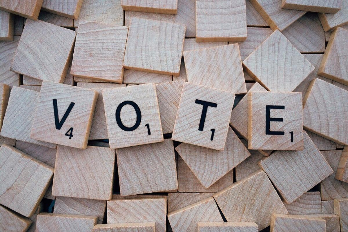 SDV: En Elecciones